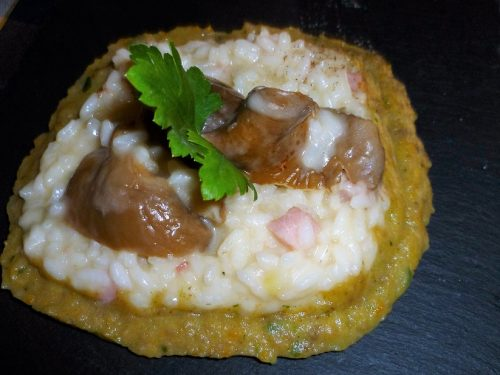 Risotto ai funghi porcini secchi con pancetta su vellutata di funghi