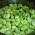 Fave-verdi-fresche